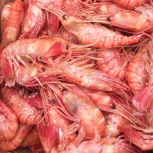 Креветка гребенчатая Ботан Эби 40на50