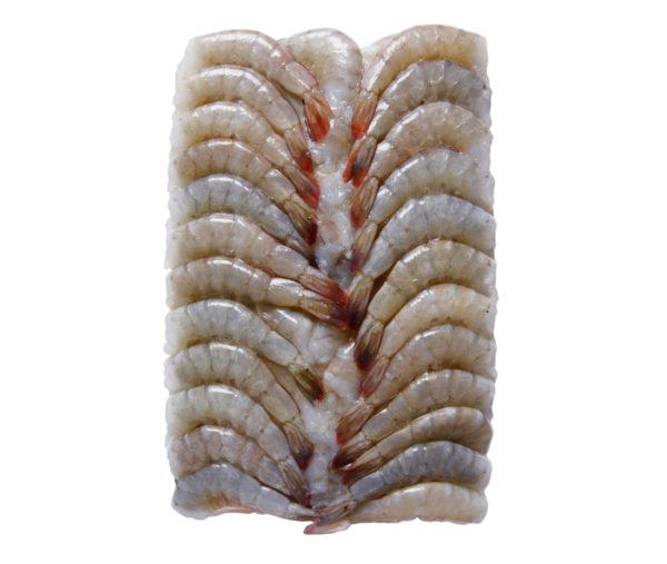 Креветка тигровая блочная