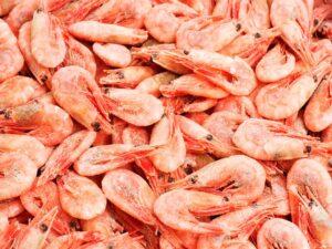 Креветка гренланд.80-100