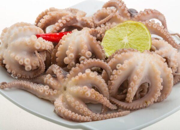 осьминоги молодые 20-40