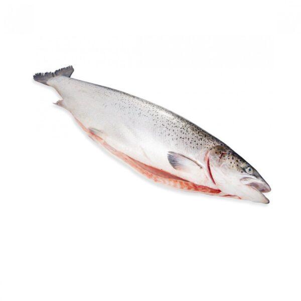 лосось 2-3
